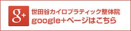 世田谷カイロプラクティック整体院google+